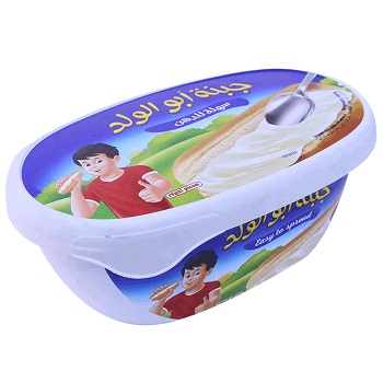 Buy Picon Spreadable Cheese 480gm online at cheapest price in Qatar